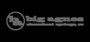 Bigagnes sponsor logo - about