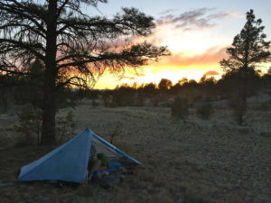 Zpacks Hexamid Solo Plus - CDT - New Mexico - apache National Forest