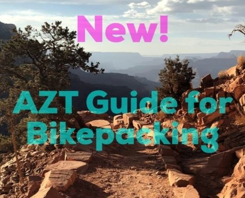 week 10 AZT Guide