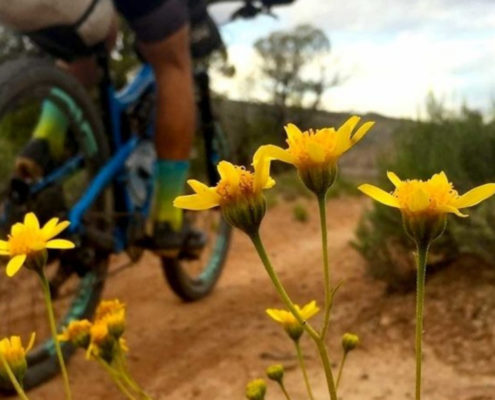 Kokopelli-bikepacking-Justin White - bikepacking, pre-trip considerations - KOKOPELLI TRAIL GUIDE
