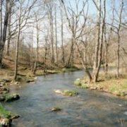 Appalachian Trail Day 44 - Trimpi Shelter - Chatfield Shelter