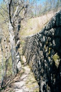 Appalachian Trail Day 59 -Bobblets Gap - Cornelius Creek Shelter