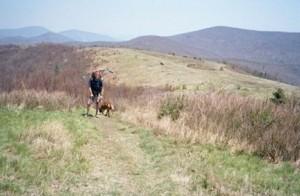 Craig Fowler - Appalachian Trail Day 61 - Matts Creek - Little Irish Creek Campsite