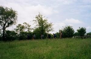Appalachian Trail Day 95 - Rutherford - Goldsmith Road