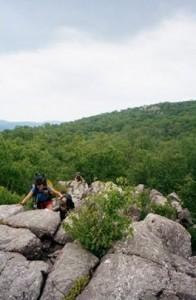 Appalachian Trail Day 97 - Wawayanda Center - Orange Turnpike