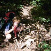 Appalachian Trail Day 146 - Monson - Wilson Valley Lean-to