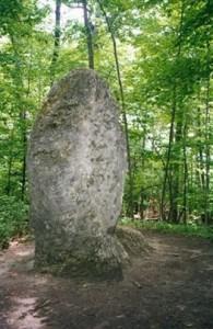 Appalachian Trail Day 105 - Pine Swamp - Brassie Brook Lean-to