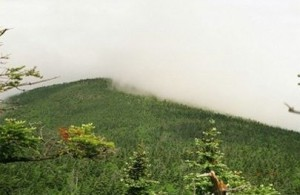 Appalachian Trail Day 117 - Claradon - Pico (Scatcave)