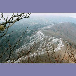 Appalachian Trail Day 20 - Icewater Spring - Tri-corner Knob Shelter