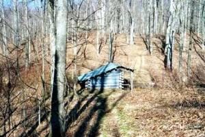 Appalachian Trail Day 27 - Hot Springs - Spring Mountain