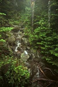 Appalachian Trail Day 141 - Sugarloaf - Stratton, ME