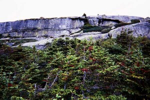 Appalachian Trail Day 139- Rangeley - Poplar Ridge Lean-to