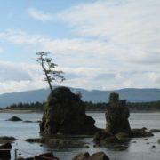 Oregon Coast - PCT 2007 Day 8 - Nehalem Bay - Pacific City, OR