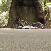 Craig Fowler - Avenue of the Giants - PCT 2007 Day 15 - Eureka - Dean Creek CG