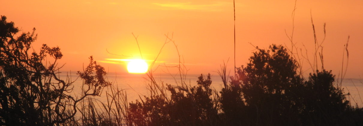 sunset - PCT 2007 Day 29 - Redondo Beach - Onofre State Beach