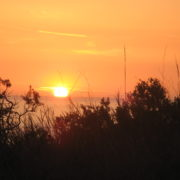 sunset - PCT 2007 Day 29 - Redondo Beach - Onofre State Beach